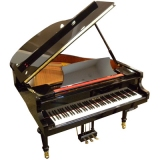Roth & Junius Grand Piano 160 E/P